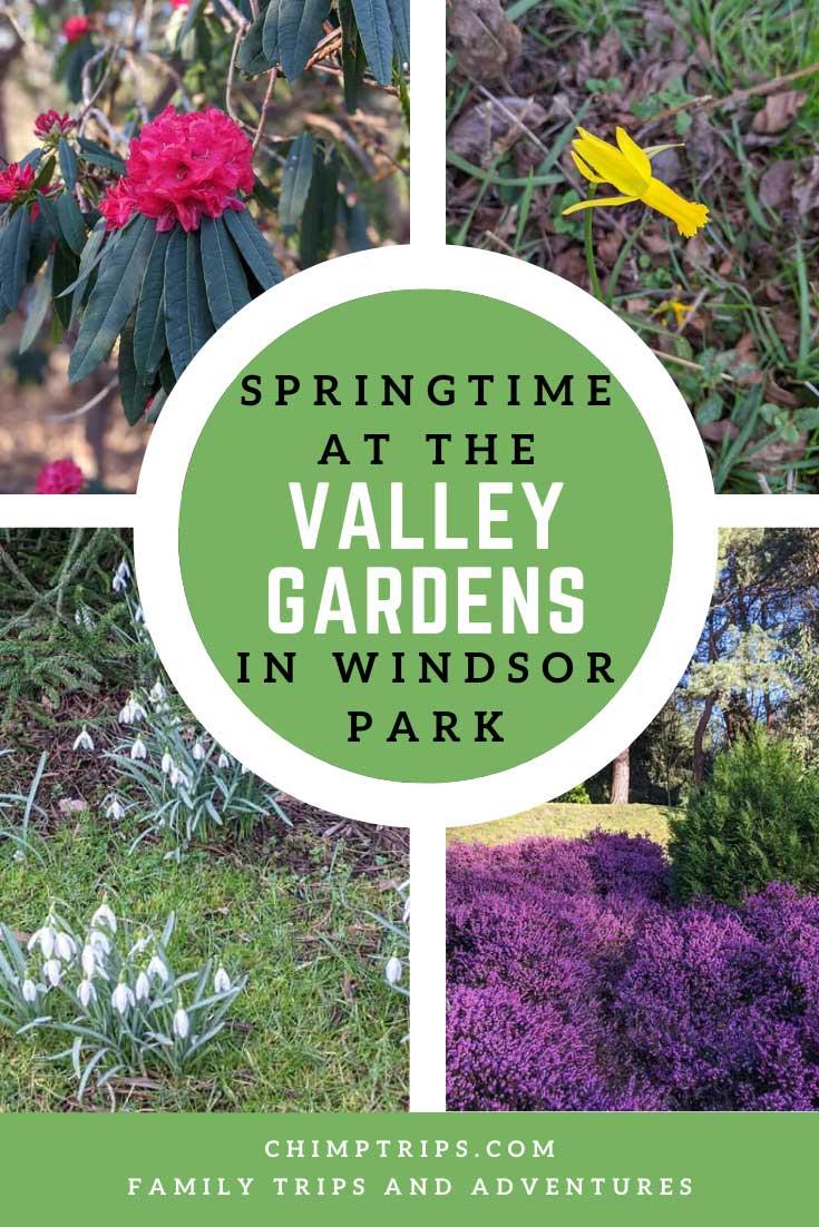 Pinterest: Springtime at the Valley Garden, Windsor Park, Surrey, UK