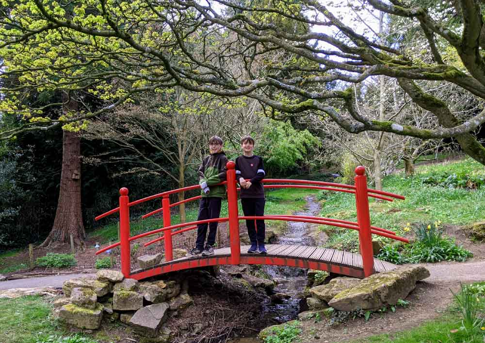 Batsford Arboretum, Cotswold, UK