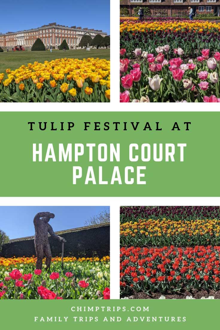 Pinterest: Tulip Festival at Hampton Court Palace, Surrey, UK
