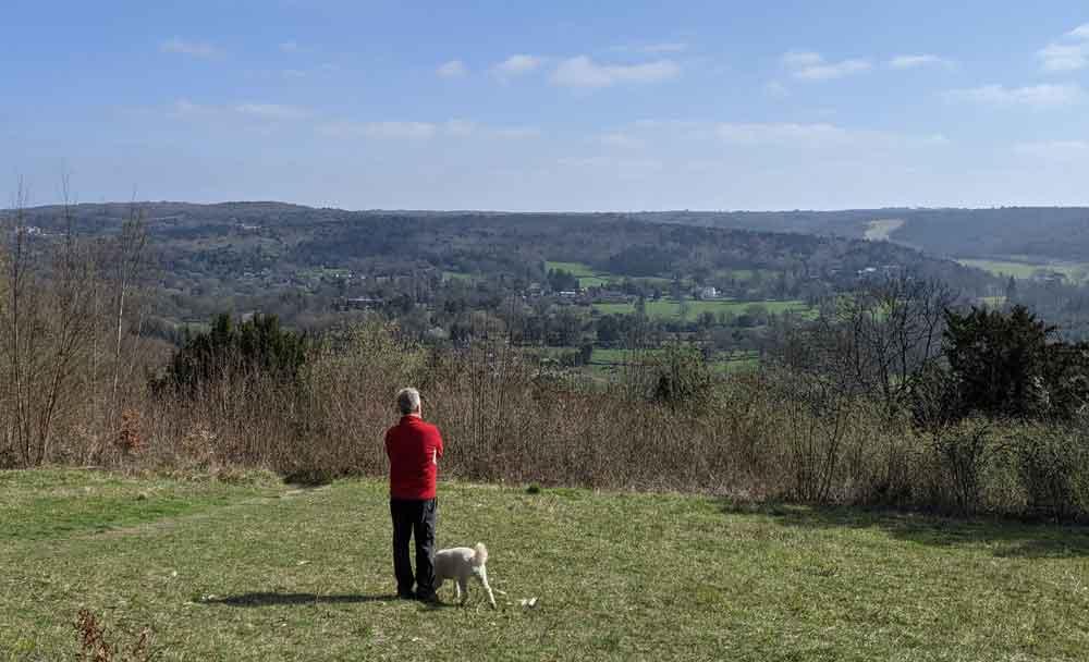 Views from Norbury Park, Surrey, UK