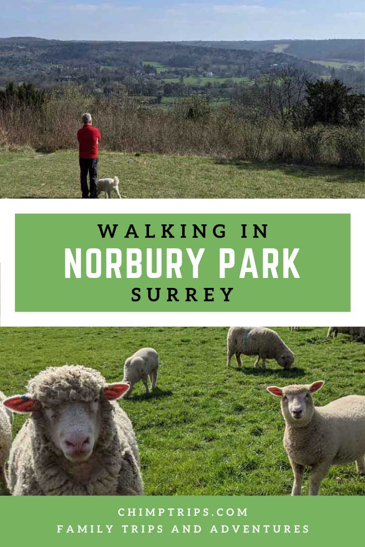 Pinterest: Walking in Norbury Park, Surrey, UK