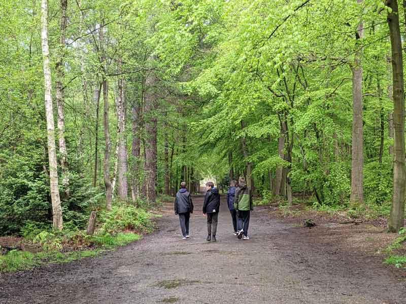 walking in Black park, Buckinghamshire, UK