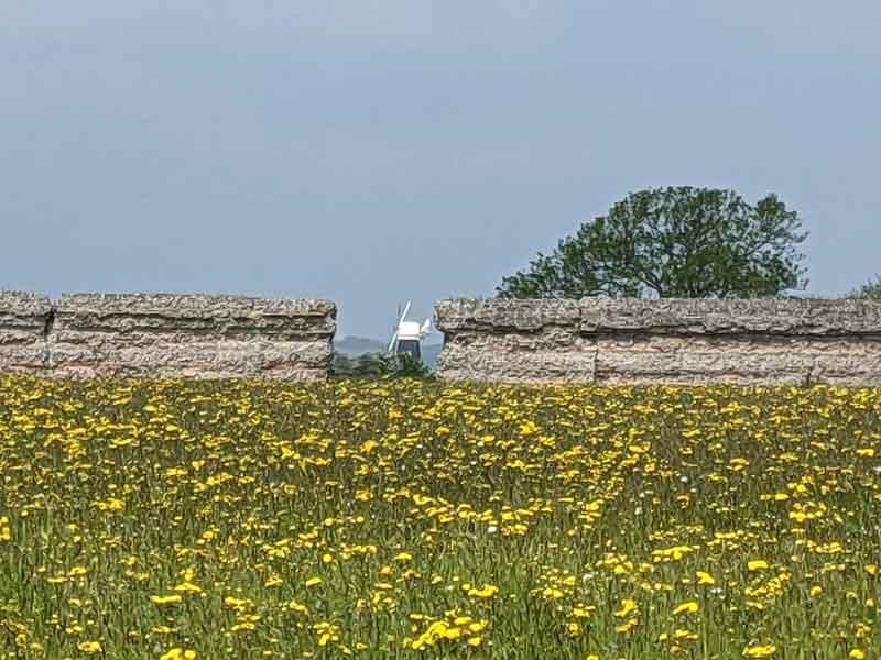 Burgh Castle views of Berney Arms Windmill, Norfolk, UK