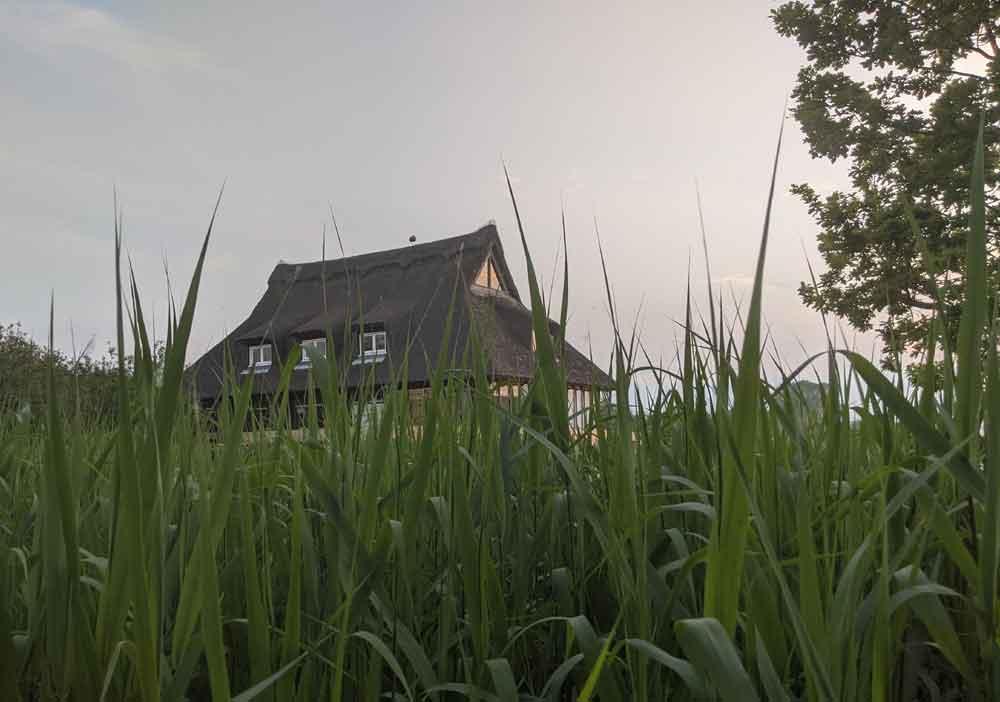 Thatched building at Ranworth Nature Reserve Center, Norfolk Broads, Norfolk, UK