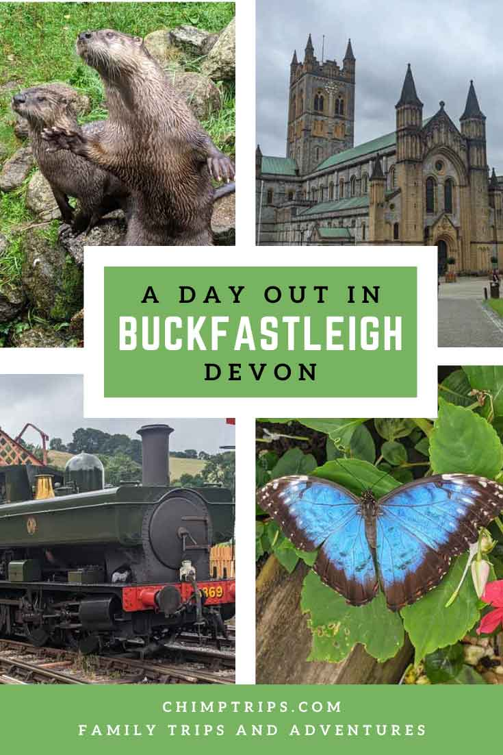 Pinterest: A day out in Buckfastleigh