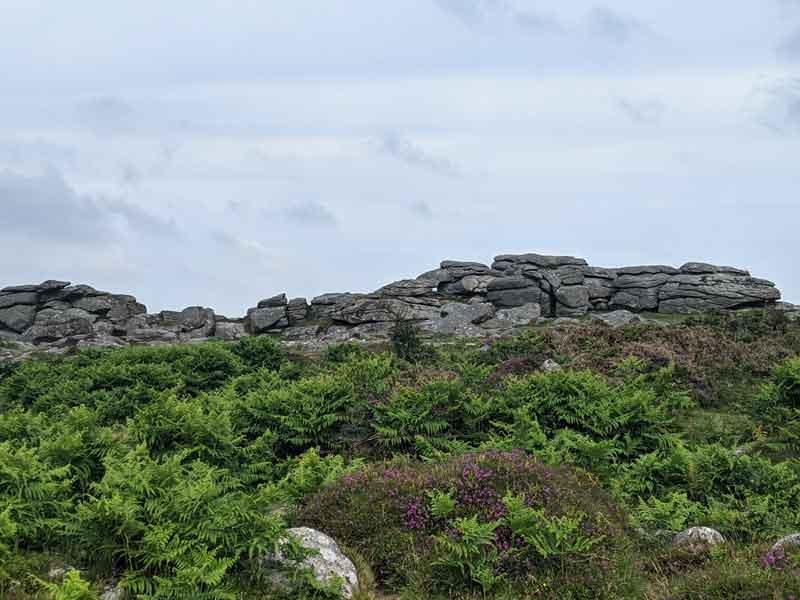 Smallcombe Rocks, Dartmoor, UK
