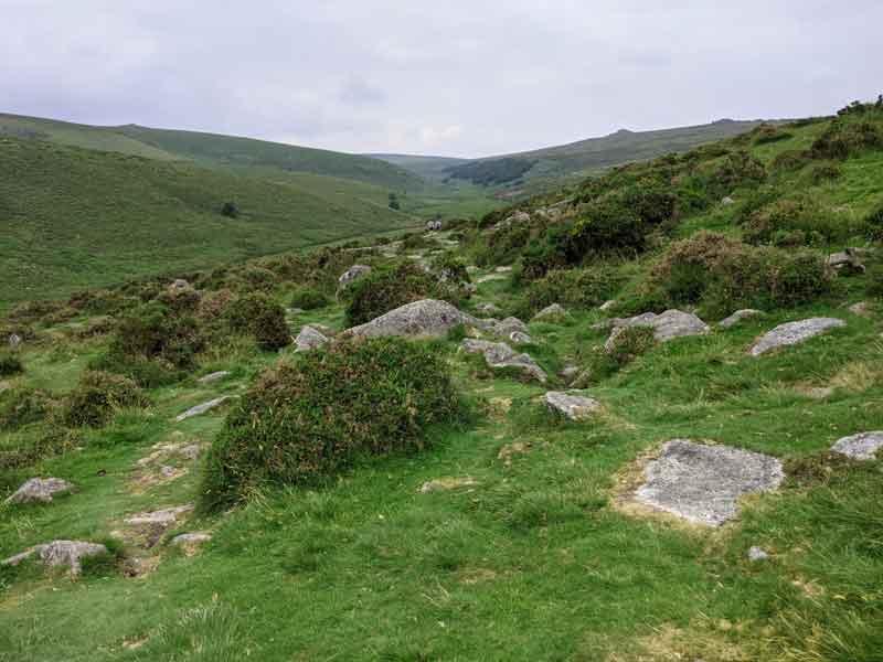 Walk over the moors to Wistmans wood, Devon, UK
