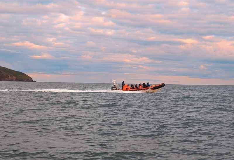 Gwbert boat trip, Wales
