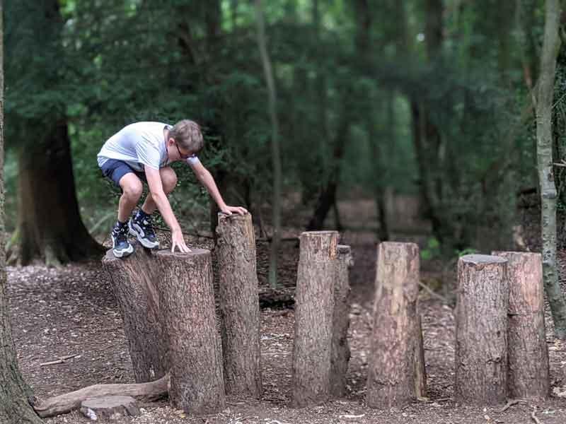 Box Hill Natural Play Trail, Surrey, UK