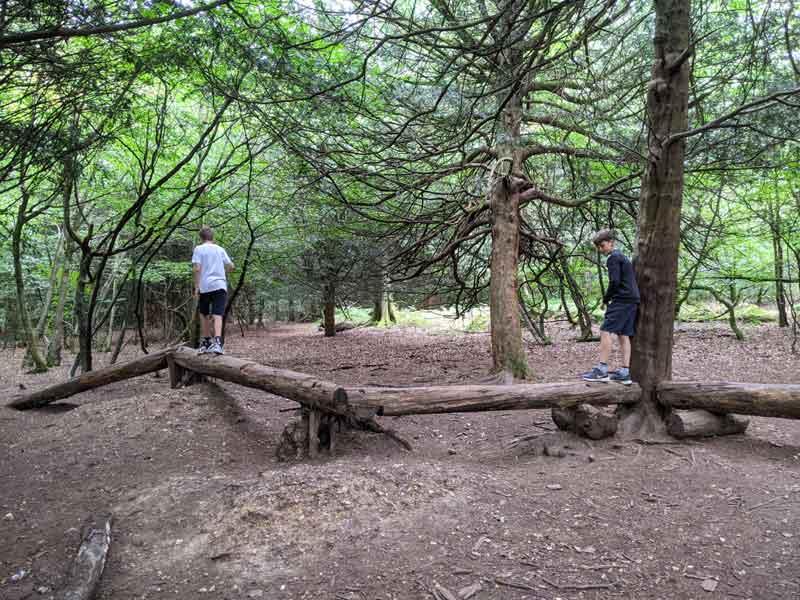 Natural play trail, Box Hill, Surrey, UK