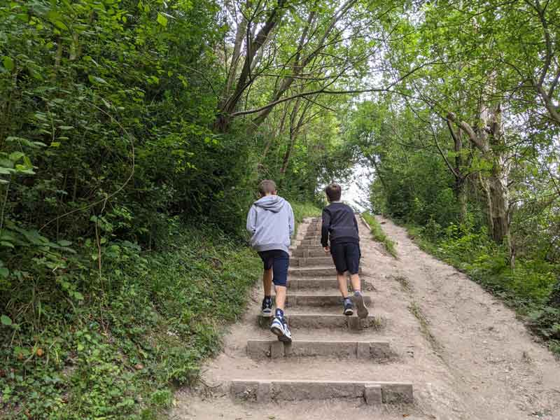 Steps on stepping stone walk, Box Hill, Surrey, UK
