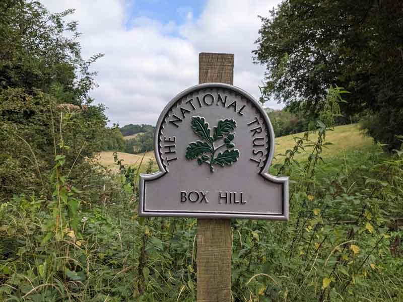 Walking at Box Hill, Surrey, UK